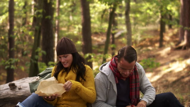 a man and a woman picking mushrooms in the forest sweden. - chanterelle stock videos & royalty-free footage