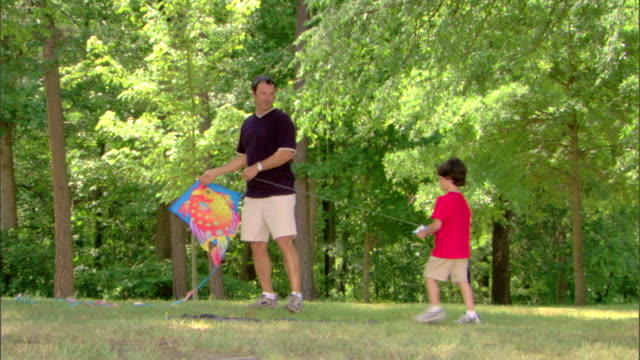 man and boy with a kite - see other clips from this shoot 1428 stock videos & royalty-free footage