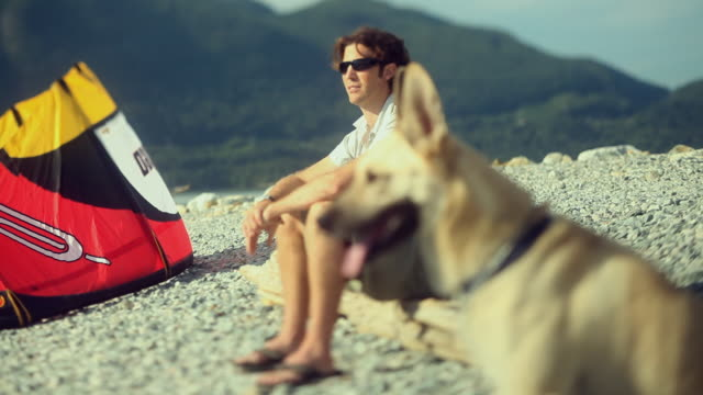 ms td selective focus man and dog sitting by kite on pebble beach / squamish, british columbia, canada - one mid adult man only stock videos & royalty-free footage
