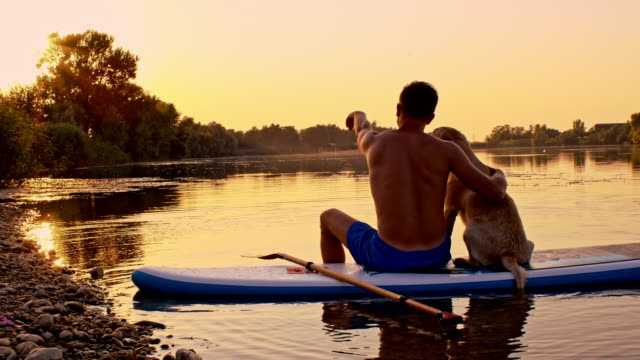 ds man and dog sitting on the paddleboard at sunset - using a paddle stock videos & royalty-free footage