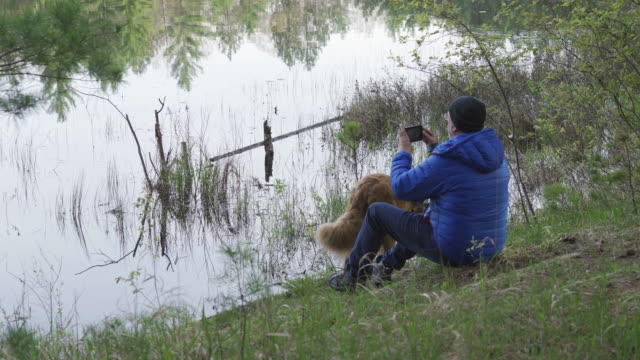 man and his dog at the lake - photographing stock videos & royalty-free footage