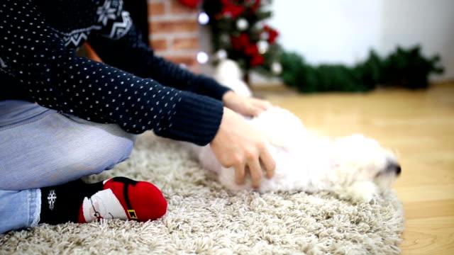 stockvideo's en b-roll-footage met man en zijn hond voor een kerstboom. - feest  en gedenkdagen
