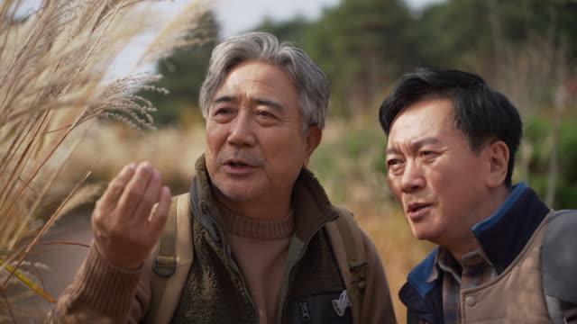 a man and his old friend in their 60s having a conversation / yangpyeong-gun, gyeonggi-do, south korea - human nose stock videos & royalty-free footage