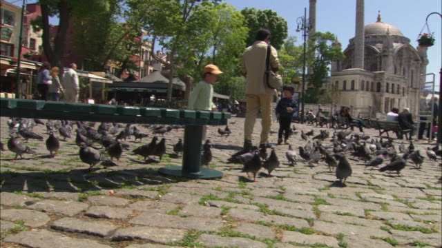 a man and two boys feeding pigeons in a town square near the ortakoy mosque in istanbul. - ortakoy mosque stock videos and b-roll footage