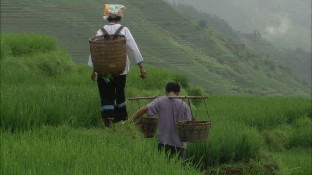 man and woman carry baskets around fields on dragon's backbone rice terraces - rice paddy stock-videos und b-roll-filmmaterial