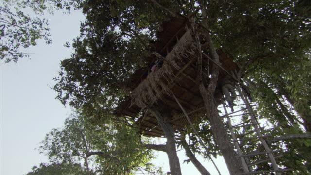 vídeos de stock, filmes e b-roll de ws cs la td man and woman descending from tree house, laos - treehouse