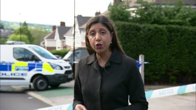man and woman held in sheffield after two teenage boys die and four other children are taken to hospital england yorkshire sheffield ext reporter to... - sheffield video stock e b–roll