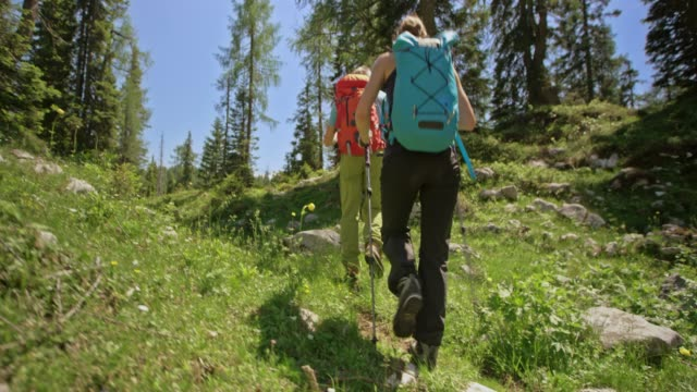 man and woman hiking on a sunny mountain with their backpacks and trekking poles - climbing equipment stock videos and b-roll footage