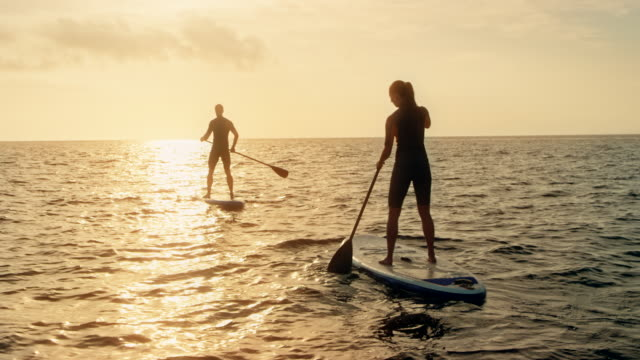 man and woman paddling on their sups into the sunset - attività del fine settimana video stock e b–roll