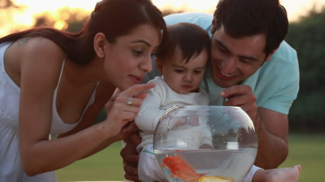 man and woman playing with their baby with the fishbowl  - fishbowl stock videos and b-roll footage