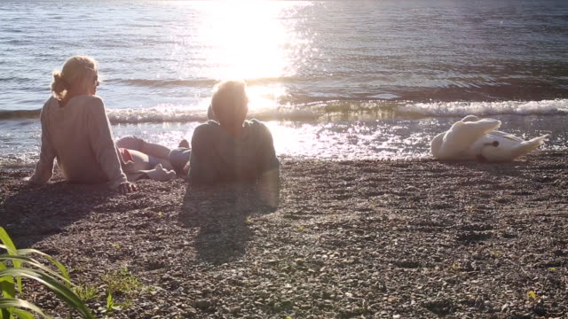 man and woman relax at lake edge, beside swan - mature couple stock videos & royalty-free footage