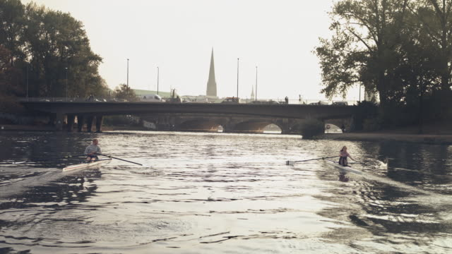 man and woman rowing rowboat in river - sculling video stock e b–roll