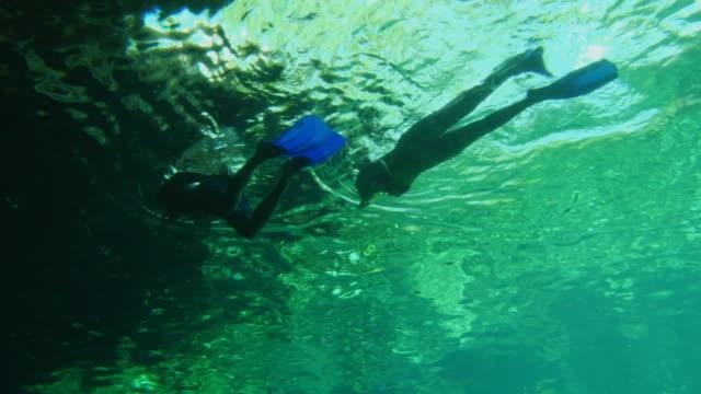 vídeos de stock, filmes e b-roll de la ws pan man and woman scuba diving underwater in caribbean sea / tulum, mexico - tulum méxico