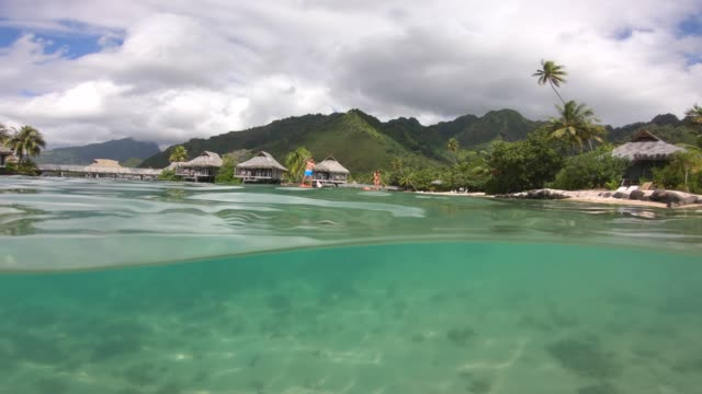 a man and woman sup stand up paddle boarding at a resort on a tropical island. - フランス海外領点の映像素材/bロール