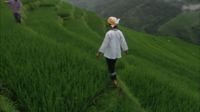 Man and woman tend to plants on Dragon's Backbone rice terraces