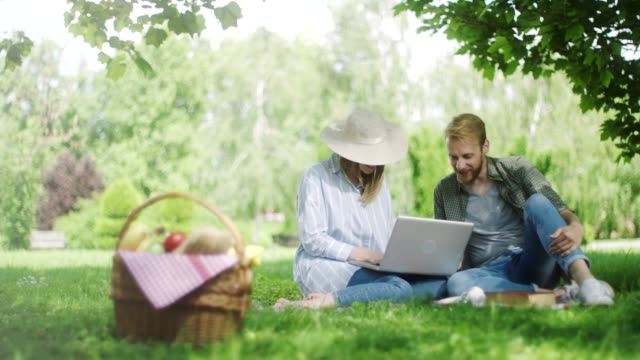 man and woman using laptop on picnic at nature - picnic basket stock videos & royalty-free footage