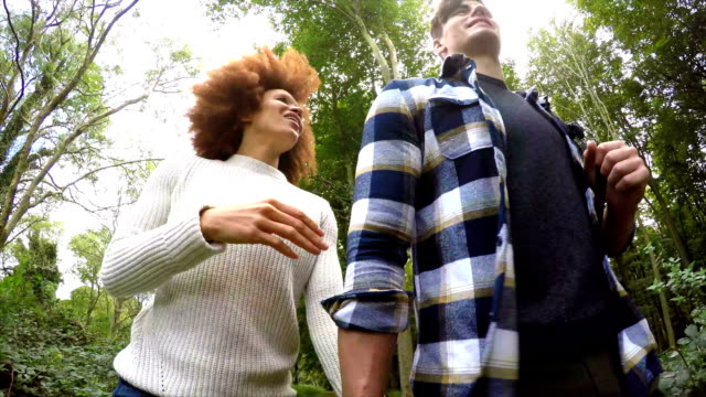 man and woman walking in woodland - west sussex stock videos & royalty-free footage