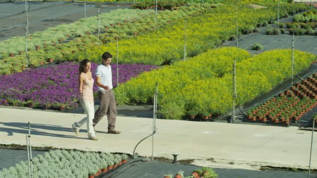 vídeos de stock, filmes e b-roll de ha ls pan man and woman walking through beds of plants in an outdoor nursery - homens de idade mediana