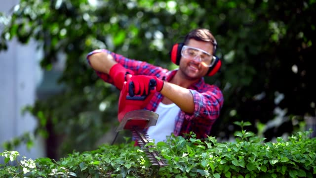 man arranging hedge in the garden - one young man only stock videos & royalty-free footage