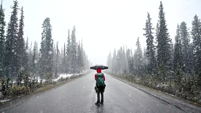 man backpacker holding umbrella standing in heavy storm on street in forest - below stock videos & royalty-free footage