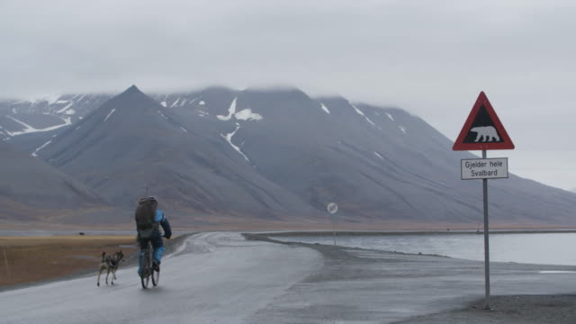 stockvideo's en b-roll-footage met man bikes alongside dog near svalbard, polar bear sign in road - rijwiel
