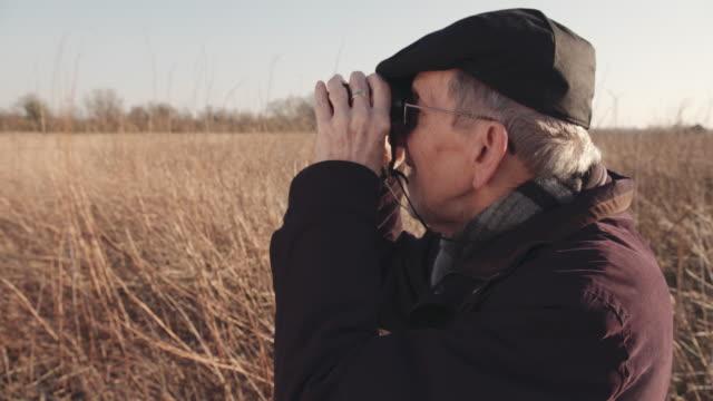 man bird watching - bird watching stock videos & royalty-free footage