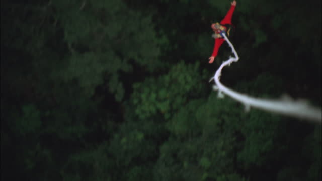 vídeos y material grabado en eventos de stock de man bungee jumping over treetops in forest, tsitsikamma national park. available in hd. - puenting