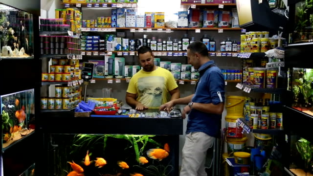 man buying fish in pet store - petshop stock videos and b-roll footage