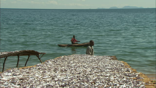 A man canoes past beds of drying fish on the shoreline of Lake Malawi.