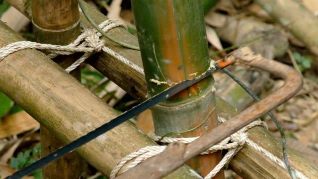 vídeos de stock e filmes b-roll de man carpenter cutting a wood with a hacksaw to build check dam - bambu material