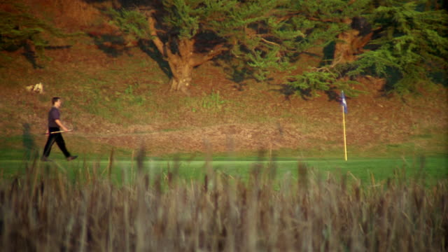 man carrying golf club walking across course / picking up golf flag - golf flag stock videos and b-roll footage