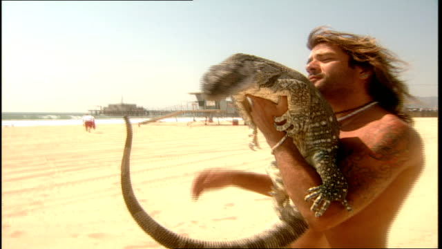 man carrying large lizard on beach in santa monica california - santa monica beach stock videos & royalty-free footage