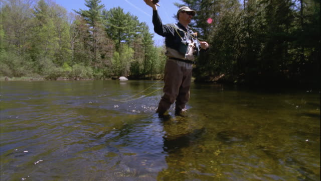 vídeos de stock, filmes e b-roll de ws tu man casting, fly fishing on grand lake stream / maine, usa - vadear