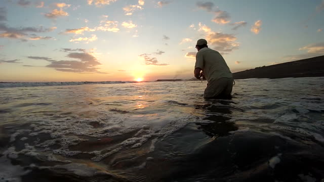 ms man casting fly rod in surf at sunset / iztapa, guatemala - fly fishing stock videos and b-roll footage