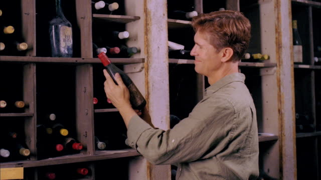 cu, man checking wine bottles in cellar, marlboro, new york state, usa - marlboro new york stock videos and b-roll footage