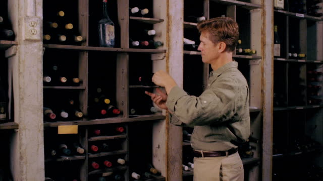 ms, man checking wine bottles in cellar, marlboro, new york state, usa - marlboro new york stock videos and b-roll footage