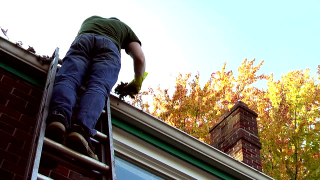 man cleaning out leaves from gutters in autumn - ladder stock videos and b-roll footage