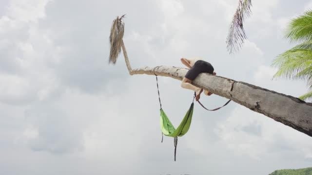 man climbing into hammock on tropical beach - tropical tree stock videos & royalty-free footage
