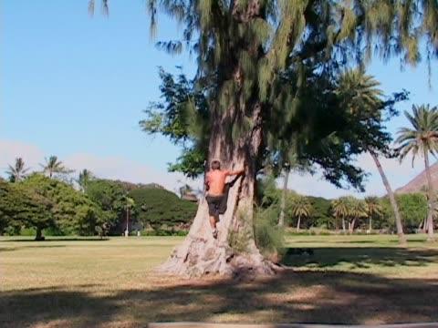 男性、木登りの公園 - ランニングショートパンツ点の映像素材/bロール