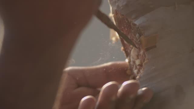 vídeos de stock, filmes e b-roll de man collects aromatic sap from frankincense tree, oman - casca de árvore