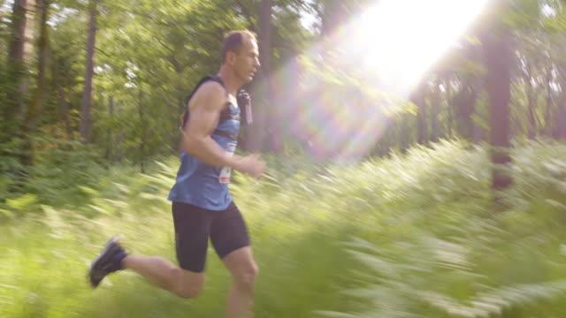 ts uomo in competizione nella maratona attraverso foresta - top video stock e b–roll