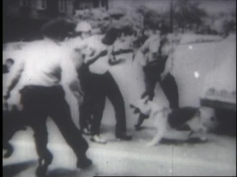 vídeos de stock e filmes b-roll de man confronted by police with attack dogs, and dragged away during the birmingham campaign of 1963. - seguir atividade móvel