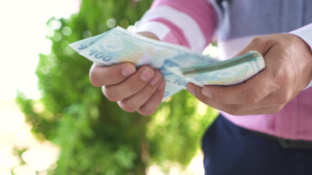Man Counting Turkish Lira