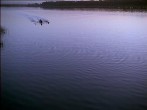 vídeos y material grabado en eventos de stock de 8 man crew crossing lake in rowing boat - remo de punta