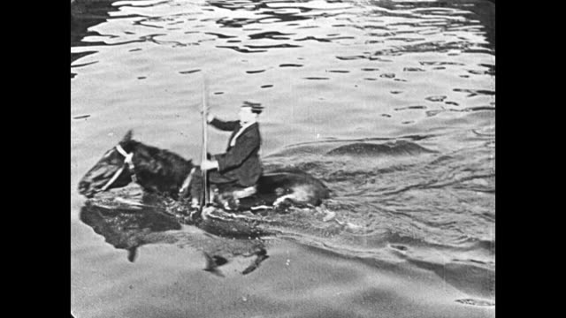 1921 man (buster keaton) crosses a river on a horse and uses oars as if he is rowing a boat - 1921 stock videos & royalty-free footage