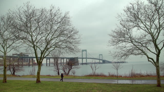 man crossing from right a ws of throgs neck bridge - bare tree stock videos & royalty-free footage