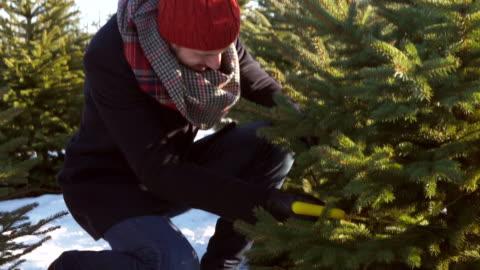 stockvideo's en b-roll-footage met man cutting/ debica/ poland - kerstboom