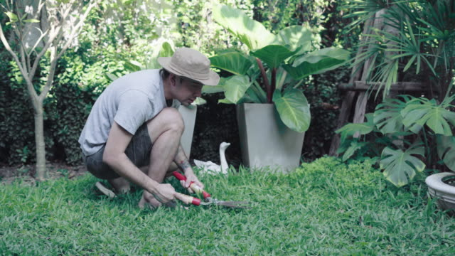 a man cutting the grass in his garden - mowing stock videos & royalty-free footage