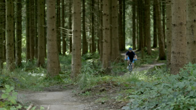 Man cycling through forest track