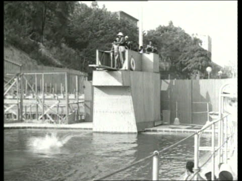 b/w man diving from diving board into public swimming pool / sound - 室外プール点の映像素材/bロール